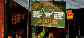 Learning a Foreign Language at a Learning School